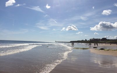 Mindfulness and Life Coaching in Cullercoats